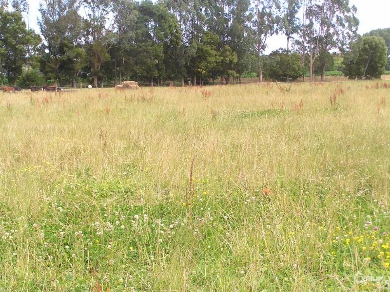 116 Golf Road, Te Awamutu - Rural Lifestyle Property for Sale in Te Awamutu