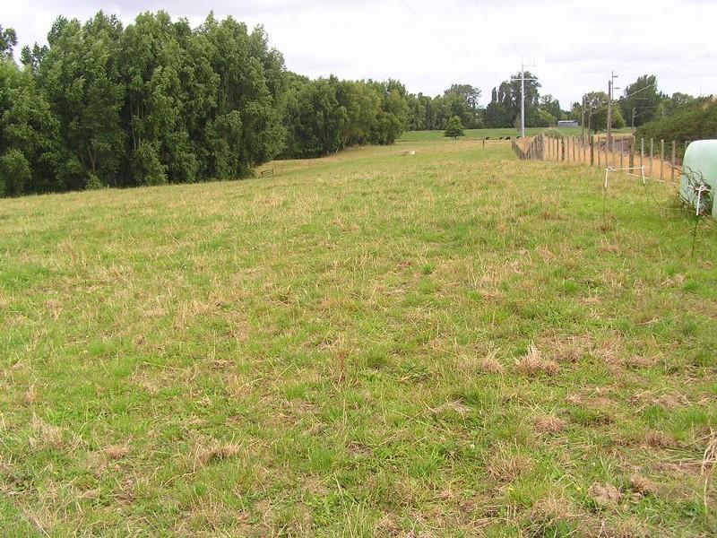 170 Old Te Kuiti Road, Otorohanga - Rural Livestock Property for Sale in Otorohanga