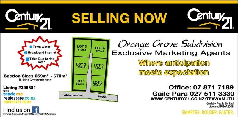 10 - 12 Whitmore Street, Kihikihi - Land for Sale in Kihikihi