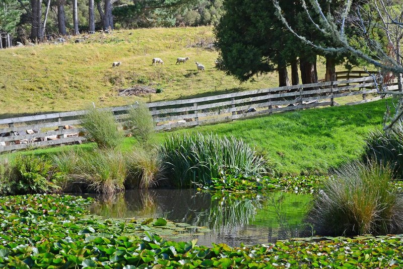 702 Moonshine Hill Road, Upper Hutt - Property for Sale in Upper Hutt