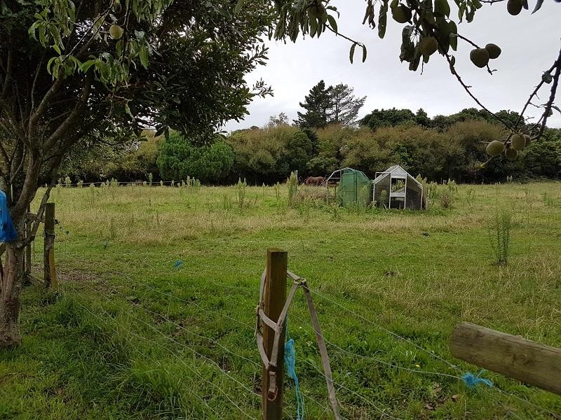 123 Riverbank Road Extension, Otaki - Rural Lifestyle Property for Sale in Otaki