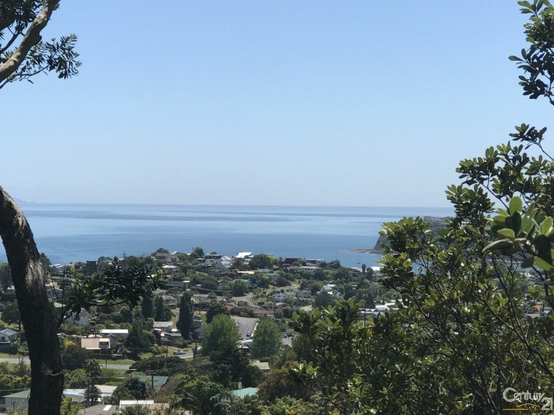view from property - 64 Cedar Terrace, Stanmore Bay - Land for Sale in Stanmore Bay