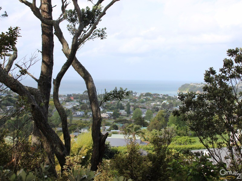 view from section due to be released - 64 Cedar Terrace, Stanmore Bay - Land for Sale in Stanmore Bay