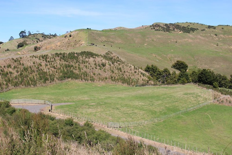 Land for Sale in Puhoi Auckland 0983