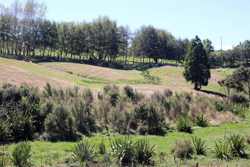 Lot 2 Palliser Downs Drive, Wainui - Property for Sale in Wainui