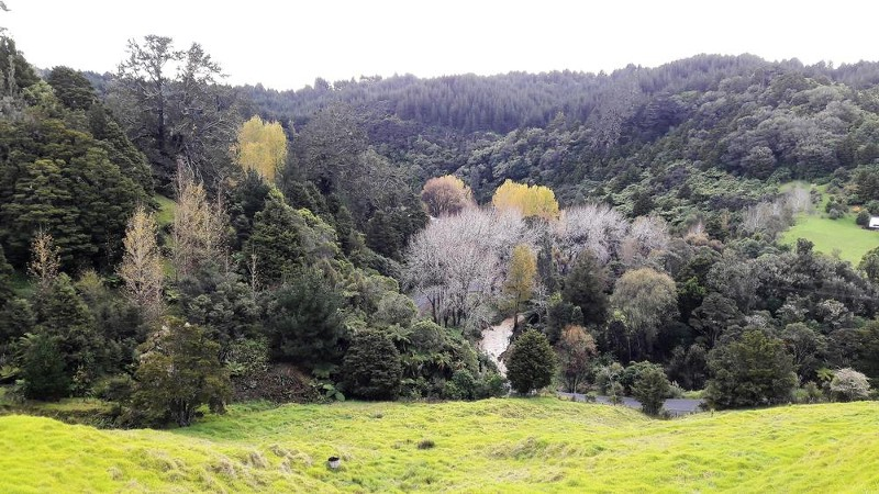 165 Ahuroa Road, Puhoi - Property for Sale in Puhoi