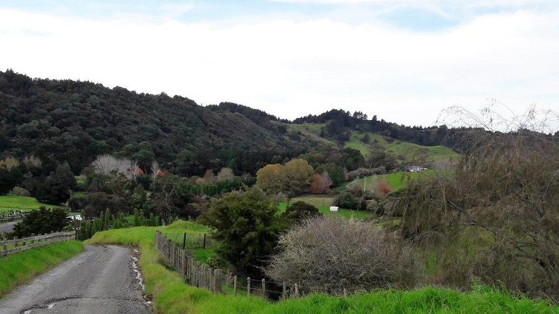 161 Ahuroa Road, Puhoi - Land for Sale in Puhoi