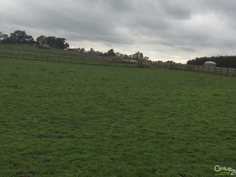 Lot 4 Blackbridge Rd, Dairy Flat - Land for Sale in Dairy Flat