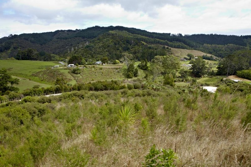 Rural Lifestyle Property for Sale in Makarau Auckland 0873