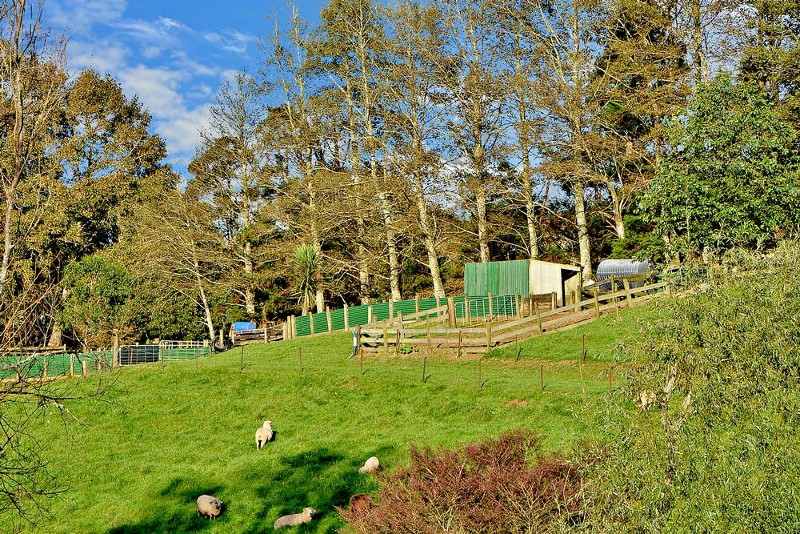 216C Kaipo Flats Road, Onewhero - Rural Lifestyle Property for Sale in Onewhero